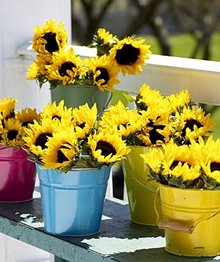 Sunflower Pail Centerpiece