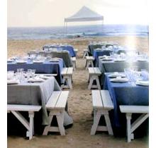 beach party wedding theme