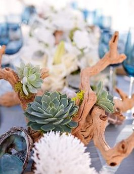Driftwood and Succulents Centerpiece Beach Wedding