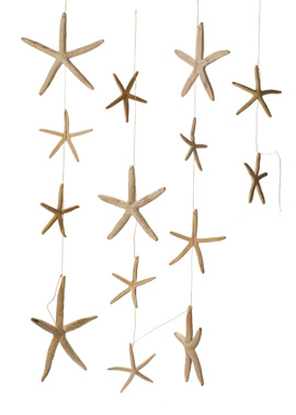 Starfish Garland
