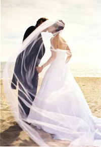 beach wedding veil